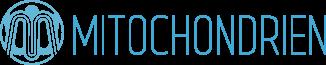 Mitochondrien Gesundheit